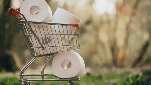 Shopping Toilet Paper Covid   - Alexas_Fotos / Pixabay